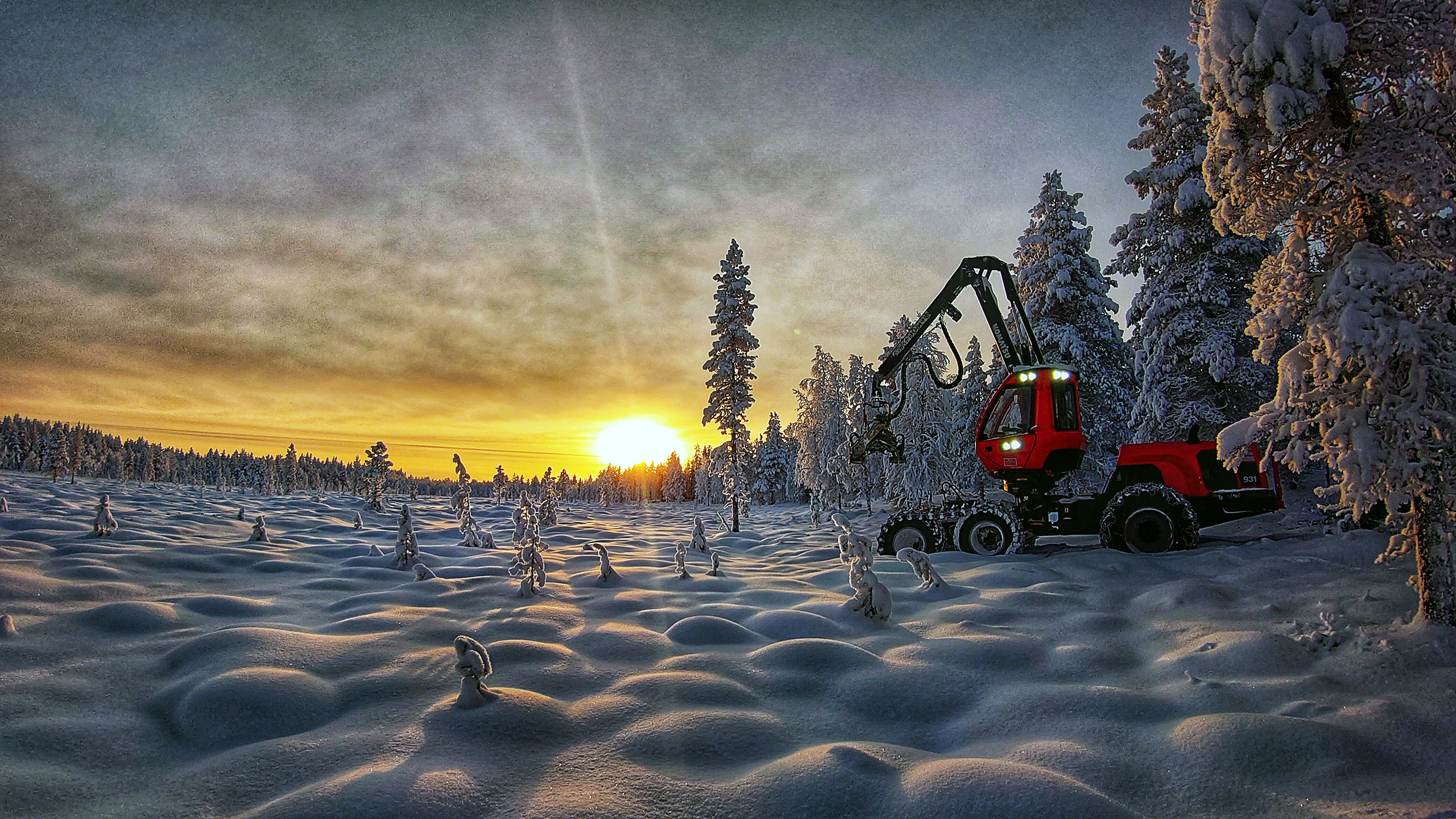 Komatsu Forest -valokuvauskilpailu marraskuu sija 1 Tuomo Väyrynen